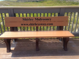 Shirley Mulrooney-Bench-Pier Park-Cancer Sucks logo-Shirley's Way-Cancer Sucks-Help with bills-People Helping People-goHaffers-Split the pot-Queen of Hearts